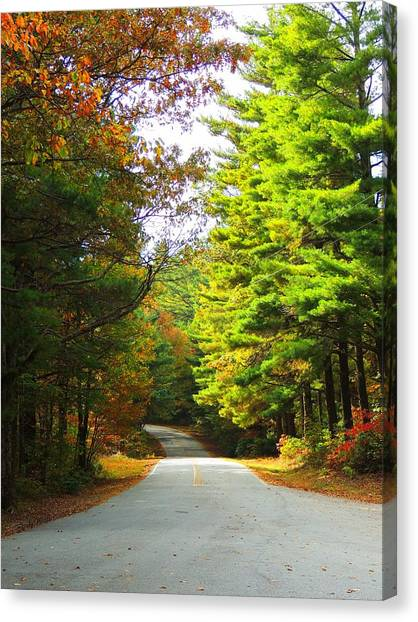 Road To The Chapel Canvas Print by Judy  Waller