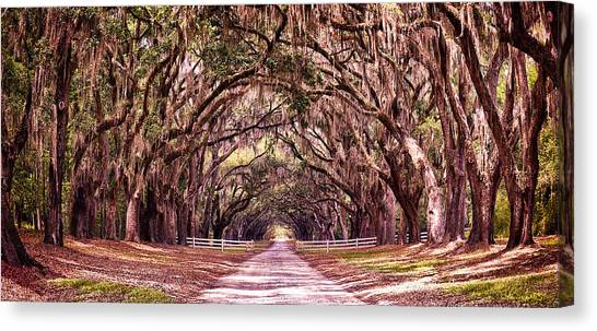 Road To The South Canvas Print
