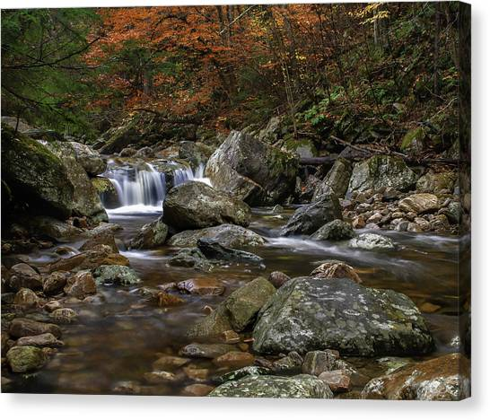Brook Canvas Print - Roaring Brook - Sunderland Vermont Autumn Scene  by Expressive Landscapes Fine Art Photography by Thom