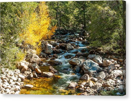Roaring River 1-7782 Canvas Print by Stephen Parker