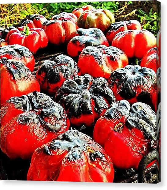 Roast Canvas Print - Roasted Peppers #roasted #peppers #food by Marius Bercea