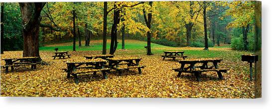 Fallen Leaf Canvas Print - Robert Treman State Park, New York by Panoramic Images