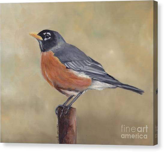 Robin Canvas Print by Charlotte Yealey