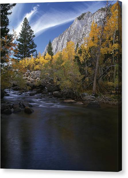 Rock Creek Canyon Gold Canvas Print
