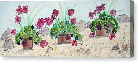 Rock Path Canvas Print