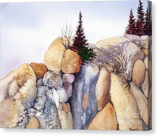 Rock Patterns Turnagain Canvas Print