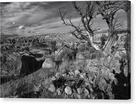 Bishop Hill Canvas Print - Rock Ring In Wind River Country by Kathleen Bishop