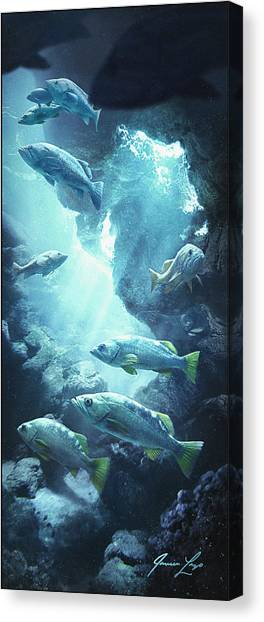 Underwater Caves Canvas Print - Rockfish Sanctuary by Javier Lazo