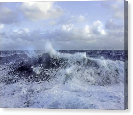 Rocking And Rolling In The Deep Sea Canvas Print
