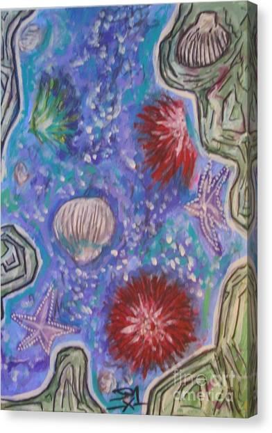 Rockpool Canvas Print by Jedidiah Morley