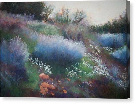 Rocks And Blooms Canvas Print by Anita Stoll