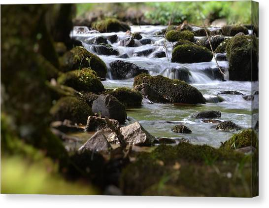 Rocks And The River Canvas Print by Dave Woodbridge
