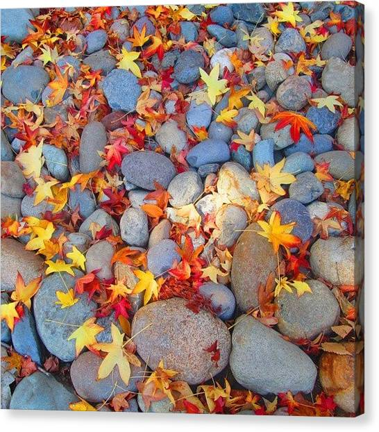 Red Rock Canvas Print - Fallen Rocks by Ifunanya Onyima