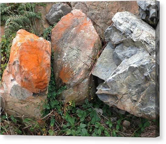 Rocks Canvas Print by Ron Torborg