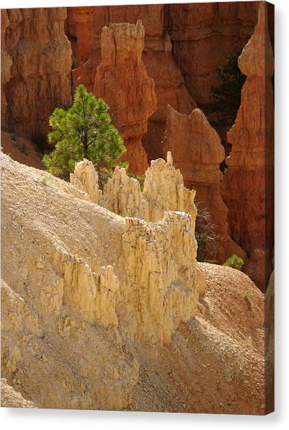 Rocky Embrace Canvas Print