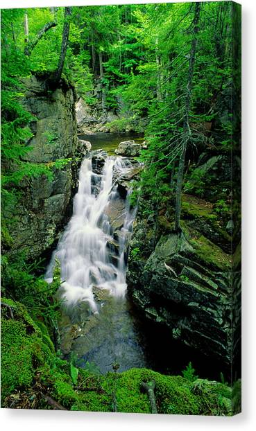 Rocky Glen Falls Canvas Print