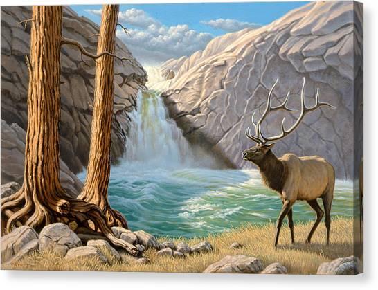 Elk Canvas Print - Rocky Mountain Elk by Paul Krapf