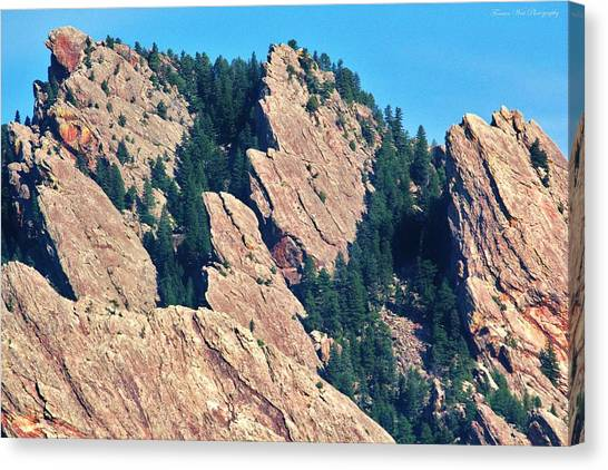 University Of Colorado Canvas Print - Rocky Mountain Towers by David Broome