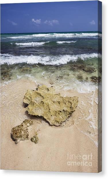 Rocky Shoreline In Tulum Canvas Print