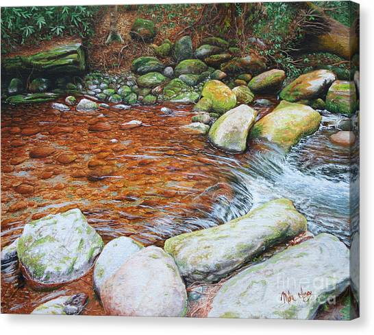 Rocky Stream Canvas Print by Mike Ivey
