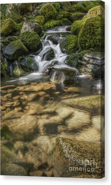 Rocky Waterfall Canvas Print