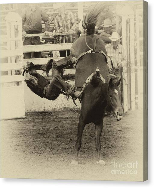 Bareback Canvas Print - Rodeo Learning To Fly by Bob Christopher