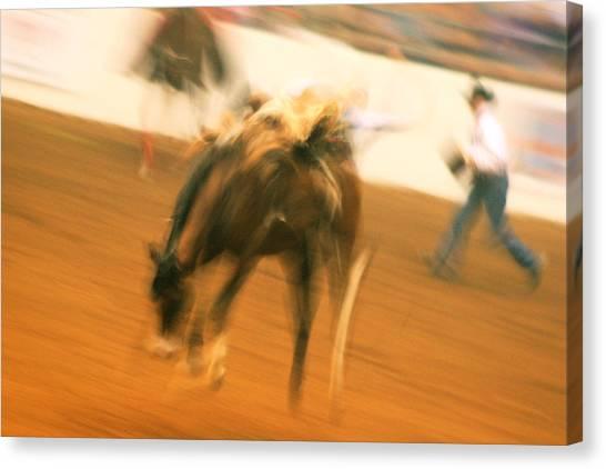 Rodeo Canvas Print by Paulette Maffucci