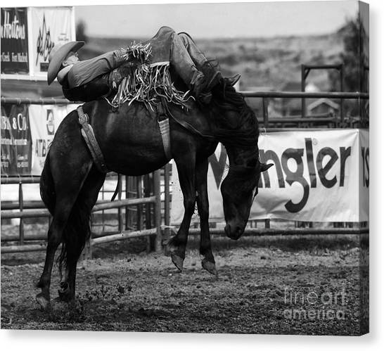 Bareback Canvas Print - Rodeo Power Of Conviction by Bob Christopher