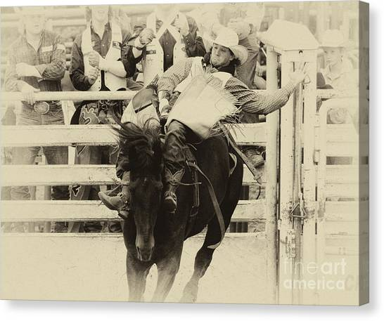 Bareback Canvas Print - Rodeo Show Your Stuff by Bob Christopher