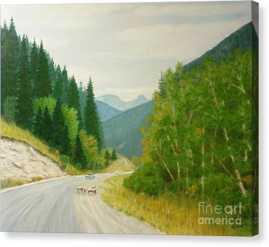 Rogers Pass Bc Canvas Print