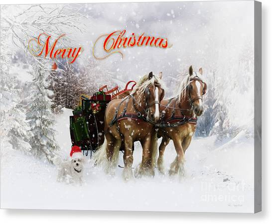 Draft Horses Canvas Print - Merry Christmas by Shanina Conway