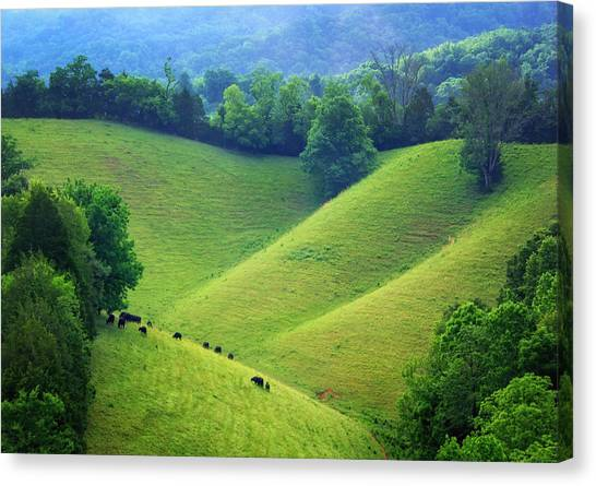 Rolling Hills Of Tennessee Canvas Print