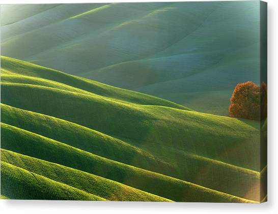 Rolling Tuscany Landscape At Evening Canvas Print by Pavliha