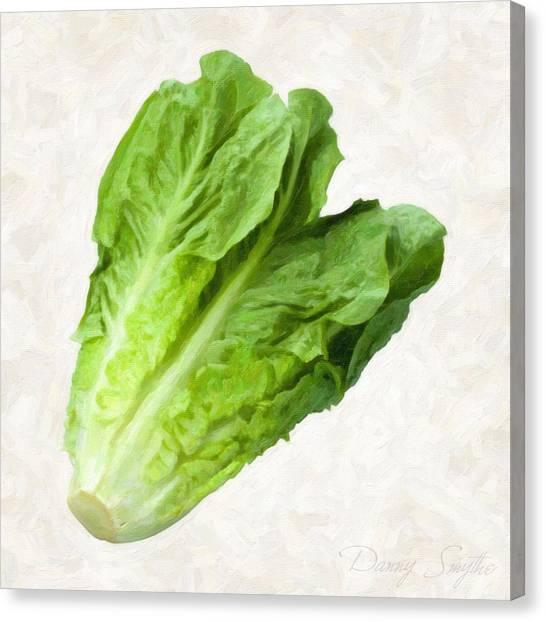 Romain Lettuce  Canvas Print by Danny Smythe