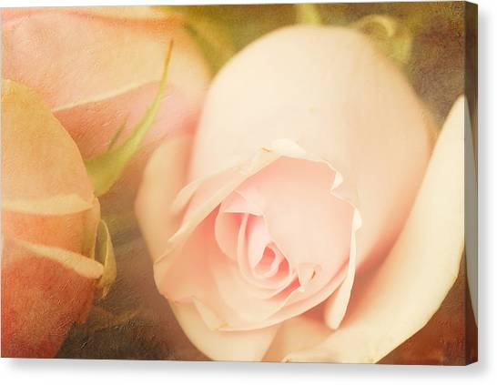 Romance Canvas Print by Dick Wood