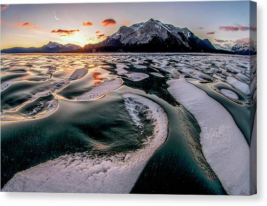 Romance On Ice Canvas Print by Charles Lai