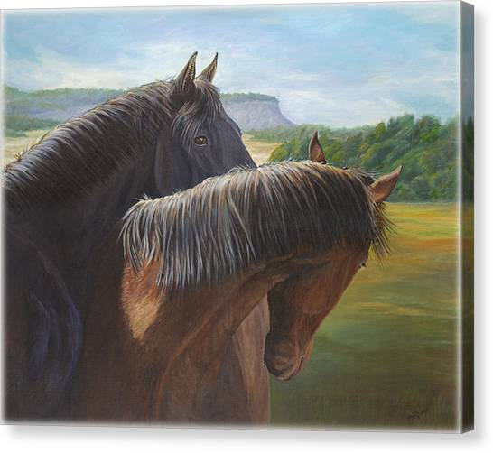 Black Stallion Canvas Print - Romance by Renee Forth-Fukumoto