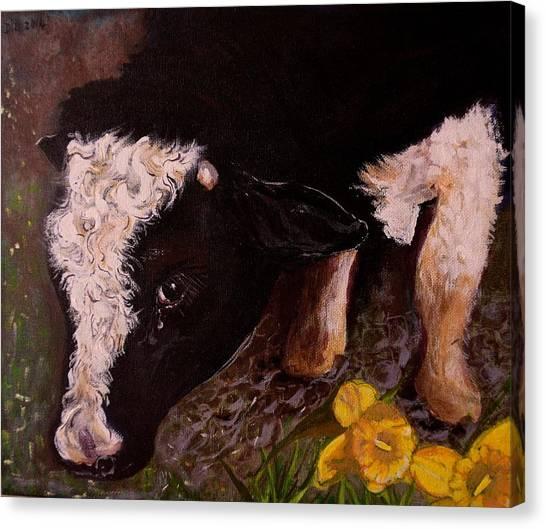 Ron The Bull Canvas Print