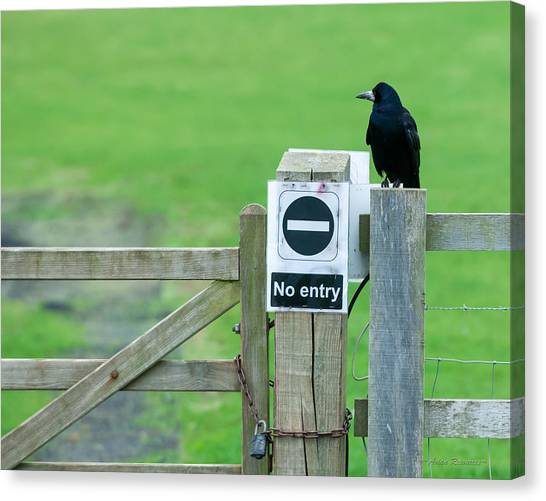 Rook On Guard Canvas Print
