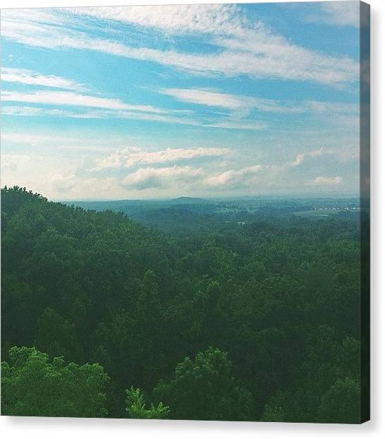 Appalachian Mountains Canvas Print - Roots. #pennsylvania #appalachian by Amanda Schoonover
