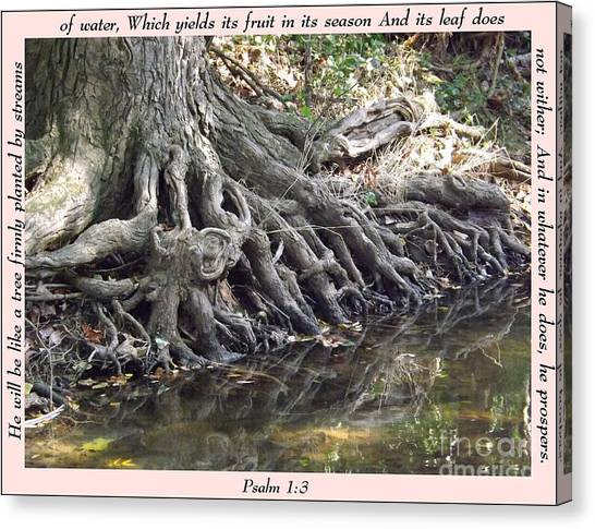 Roots With Verse Psalm 1 3 Canvas Print