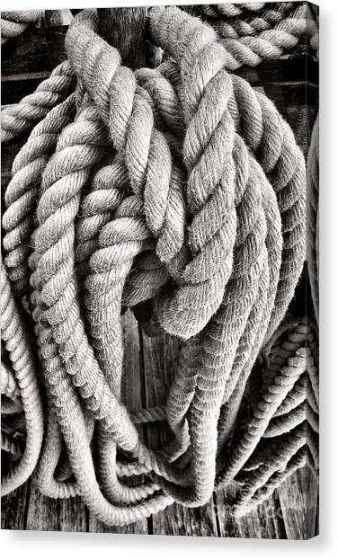 Knot Canvas Print - Rope by Olivier Le Queinec