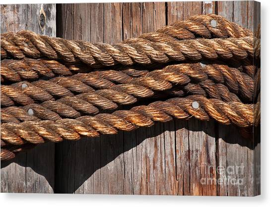 Knot Canvas Print - Roped by Dan Holm