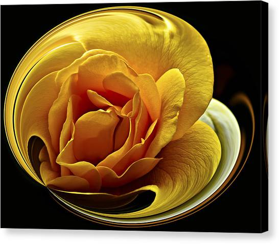 Rose Cup Canvas Print