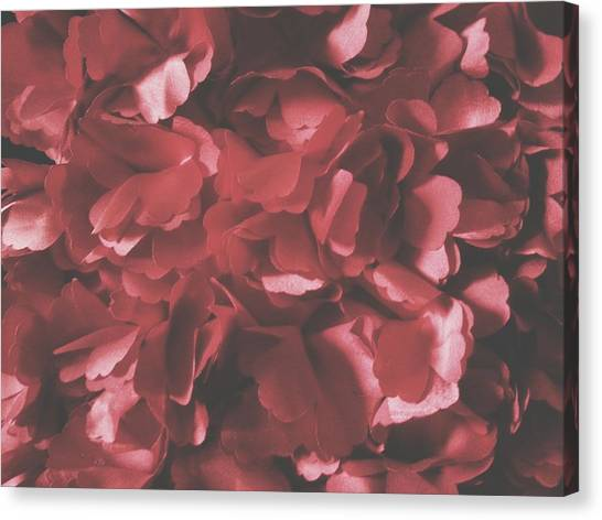 Red Roses Canvas Print - Rose Forest Material World by Theano Exadaktylou