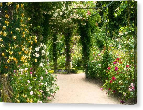 Rose Garden At Alnwick Canvas Print