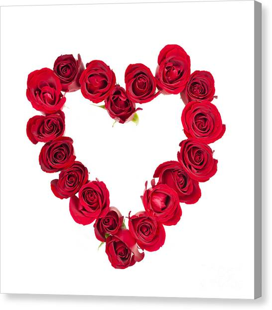 Red Roses Canvas Print - Rose Heart by Elena Elisseeva