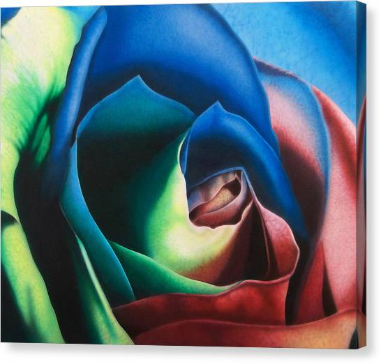 Rose Hybrid Canvas Print by Michael Wicksted