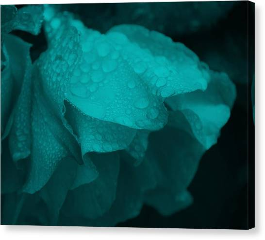 Rose In Turquoise Canvas Print