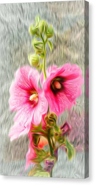 Rose Of The North Abstract. Canvas Print